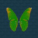 Butterfly's Passenge